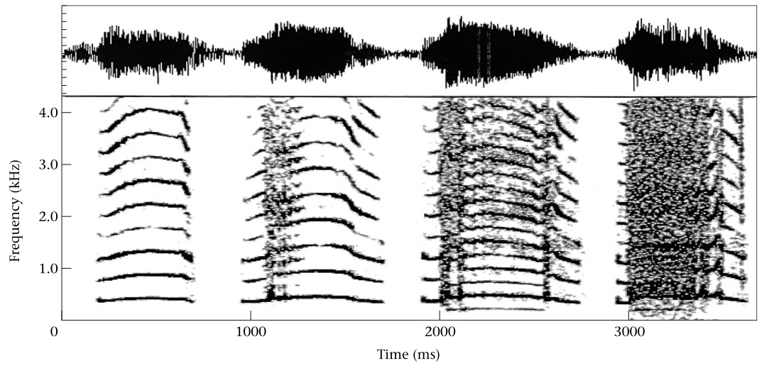 "Sound spectrogram of rhesus macaque ""coo"" calls"
